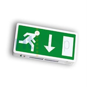 DELTIKLED - Exit Box LED 3hr Maintained Arrow Down