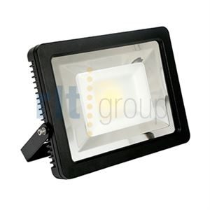 DENTAR LED Low Voltage Floodlight 10W IP65 Daylight